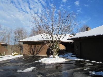 Sheboygan Condo/Townhouse Active Contingent With Offer: 2825 Windepoint Ct