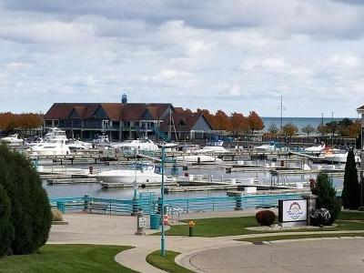 Racine Condo/Townhouse Active Contingent With Offer: 35 Harborview Dr #213