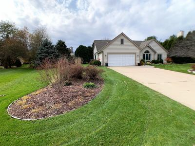 Hartland Single Family Home Active Contingent With Offer: 735 Marquette Ct