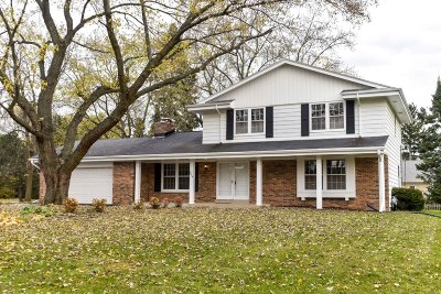 Brookfield Single Family Home For Sale: 520 N Park Blvd