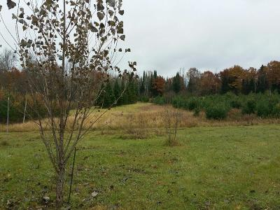 Wausaukee Residential Lots & Land For Sale: N10288 Forest Rd