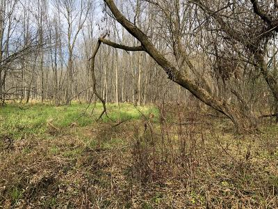 Oostburg Residential Lots & Land For Sale: Lt1 Huron Ave
