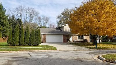 Oconomowoc Single Family Home Active Contingent With Offer: 724 Lake Bluff Dr