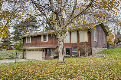 Hartland Single Family Home For Sale: 518 Oxford Dr