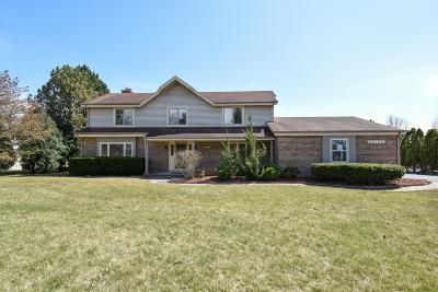 Brookfield Single Family Home For Sale: 20725 W North Ave