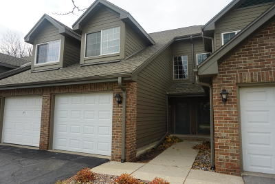 Brookfield Condo/Townhouse Active Contingent With Offer: 18775 Brookfield Lake Dr #3