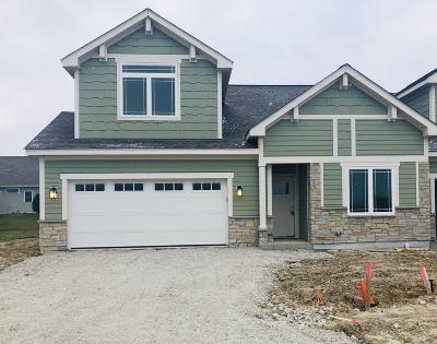 Pleasant Prairie Condo/Townhouse For Sale: 4761 S Cottage Ln #10