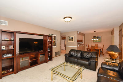 Pewaukee Condo/Townhouse Active Contingent With Offer: 333 Park Hill Dr #C