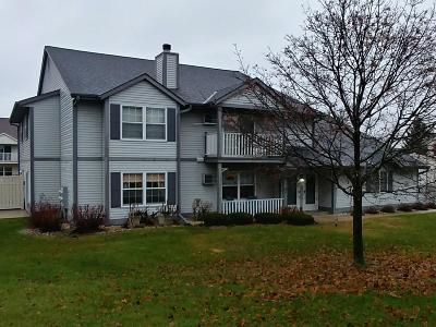 West Bend Condo/Townhouse Active Contingent With Offer: 830 Devonshire Ln #D
