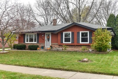 Oak Creek Single Family Home Active Contingent With Offer: 7729 S Quincy Ave