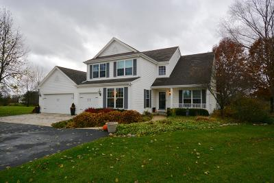 Delafield Single Family Home Active Contingent With Offer: 2537 Grove Ct