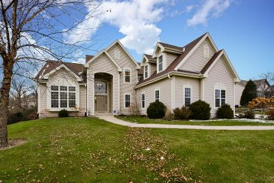 Menomonee Falls Single Family Home Active Contingent With Offer: W127n6269 Sumac St