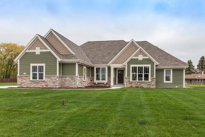 Menomonee Falls Single Family Home For Sale: N67w15832 Tamarack Trl
