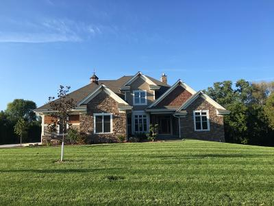 Single Family Home For Sale: N41w23416 Century Farm Rd