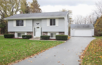 Hartland Single Family Home For Sale: 159 Willow Dr