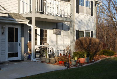 Washington County Condo/Townhouse Active Contingent With Offer: 2140 Marie Ct #2