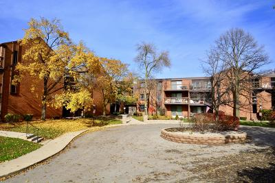Condo/Townhouse Active Contingent With Offer: 5200 S Tuckaway Blvd #306A