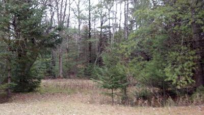 Wausaukee Residential Lots & Land For Sale: 1.68 Acres Peterson Road