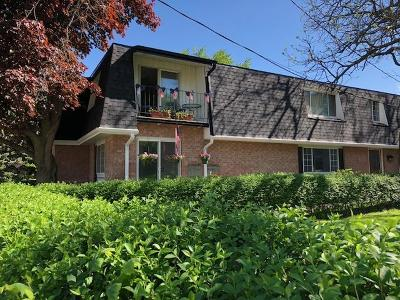 Milwaukee County Multi Family Home Active Contingent With Offer: 201 N Chicago Ave