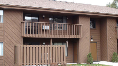 Sheboygan Condo/Townhouse Active Contingent With Offer: 3207 W Meadows Ct #A