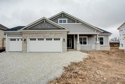 Racine County Single Family Home For Sale: 728 Still Pond Dr #Lt82