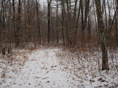 Wausaukee Residential Lots & Land For Sale: N12111 Dumman Rd