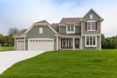 Waterford Single Family Home For Sale: 407 Fairview Cir