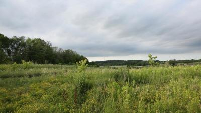 Slinger WI Residential Lots & Land For Sale: $74,900