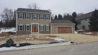 Hartford Single Family Home For Sale: 221 Willow Ln