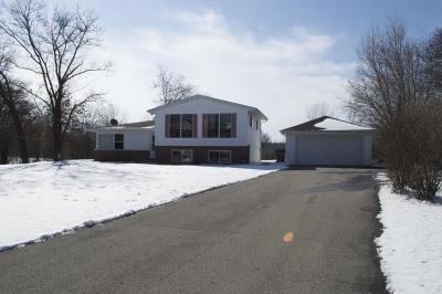 Kenosha County Single Family Home For Sale: 12532 Lakeshore Dr