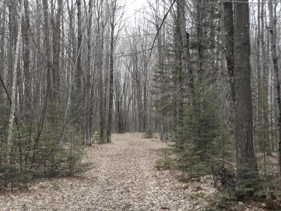 Crivitz Residential Lots & Land For Sale: 39 Acres Pioneer Rd