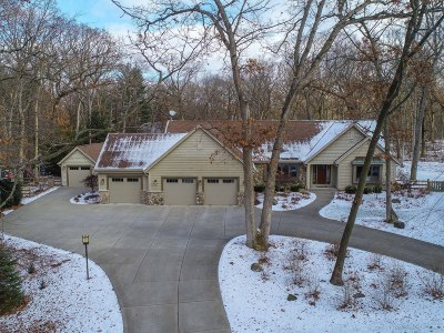 Wales Single Family Home For Sale: 330 Elias St