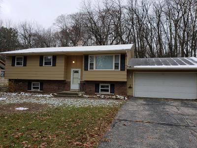 Kenosha County Single Family Home For Sale: 141 Marion Ave
