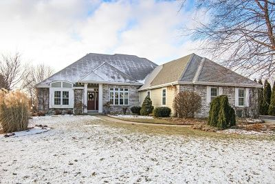 Waukesha County Single Family Home For Sale: 193 Crooked Stick Pass