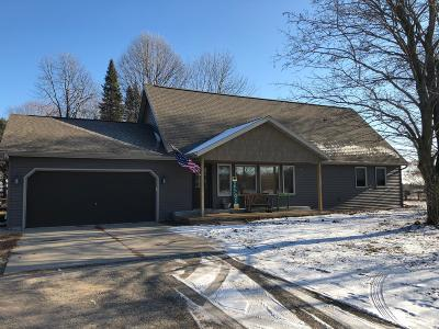 Peshtigo Single Family Home For Sale: N4294 Cty Rd E