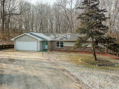 Single Family Home Active Contingent With Offer: 529 Woodland Dr