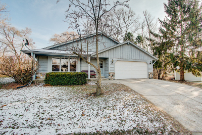 Waukesha County Single Family Home For Sale: 157 Debbie Dr