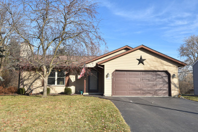 Sussex Single Family Home Active Contingent With Offer: N65w23352 Elm Dr