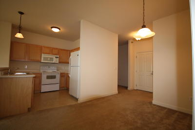 Milwaukee Condo/Townhouse For Sale: 4110 S Lake Dr #B133