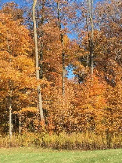Washington County Residential Lots & Land For Sale: Lot 1 Westminster Ct.