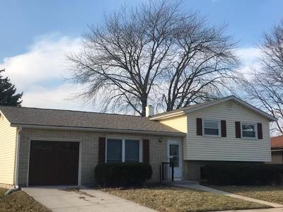 Racine County Single Family Home For Sale: 4032 Manhattan Dr