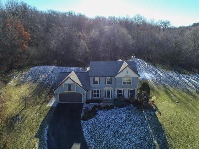 Single Family Home Active Contingent With Offer: 103 Chestnut Ct