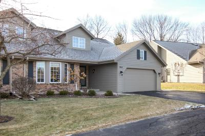 West Bend Condo/Townhouse Active Contingent With Offer: 303 Deer Ridge Dr