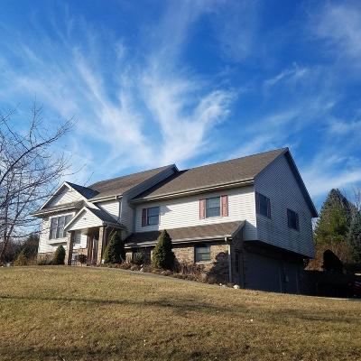 Town Richfield, Village Richfield, Hubertus, Colgate Single Family Home Active Contingent With Offer: 1011 Clover Ct
