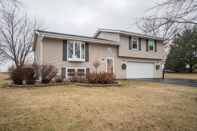 Mukwonago Single Family Home Active Contingent With Offer: W334s7955 Tolbert Ln