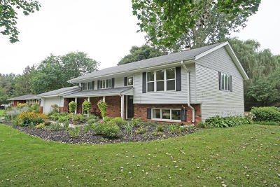 Dousman Single Family Home Active Contingent With Offer: 119 Wolf Dr
