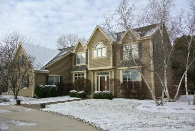 Brookfield Single Family Home For Sale: 815 Auburn Dr