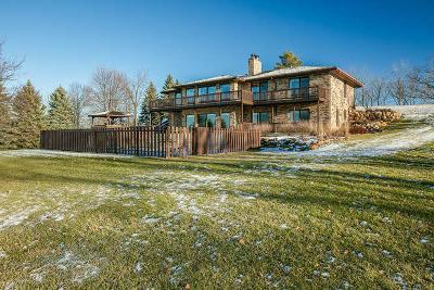 Lake Geneva Single Family Home For Sale: 1200 Pheasant Ct