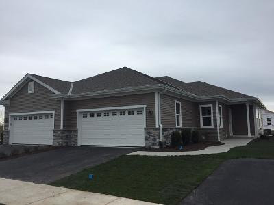 West Bend Condo/Townhouse Active Contingent With Offer: 2620 Moraine Ct