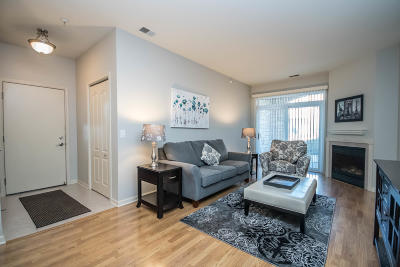 Condo/Townhouse Active Contingent With Offer: 9411 S Cobblestone Way #D